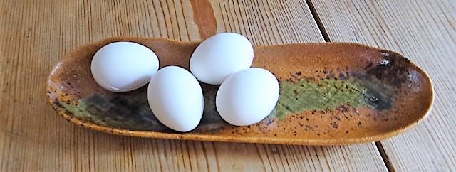 Bohnen Thunfisch Salat mit Rucola Pesto und Ei (11)