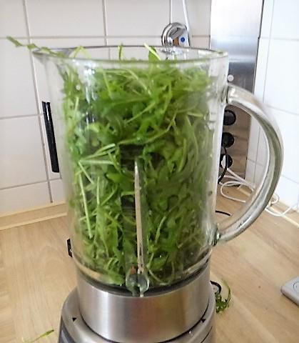 Bohnen Thunfisch Salat mit Rucola Pesto und Ei (7)