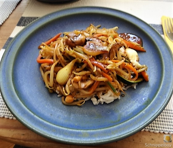 Mungbohnenkeimlinge mit Gemüse,Reis (2)