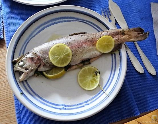 Forelle mit Petersilienkartoffel, Meerrettichdip und Salat (24).JPG