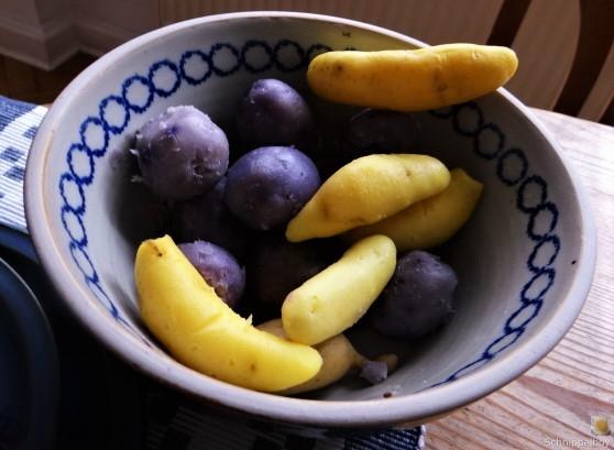 Handgemachter Quark mit Kartoffeln (6)