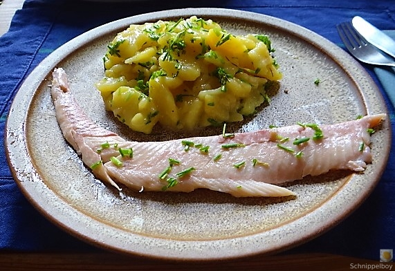 Kartoffelsalat mit frisch geräucherter Forelle (15)