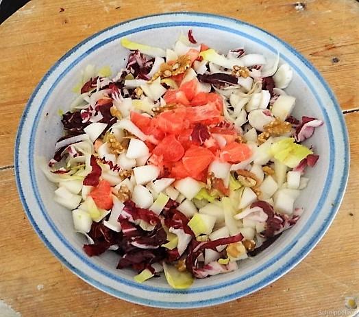 Chicoree,Radiccio,Birne und Grapefruit (6)