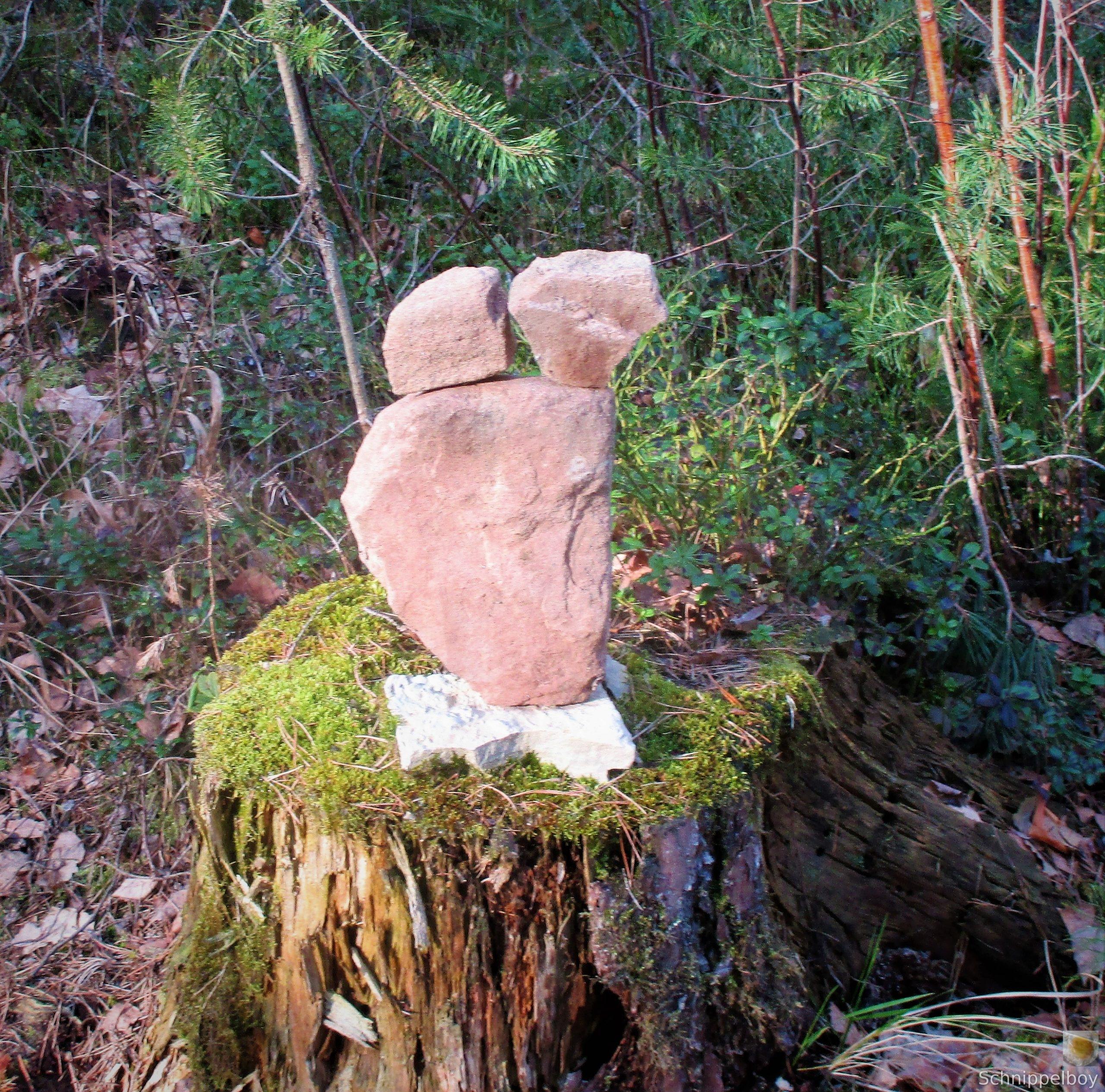 19.03.20 Wald Blankenhain. 1 (20)