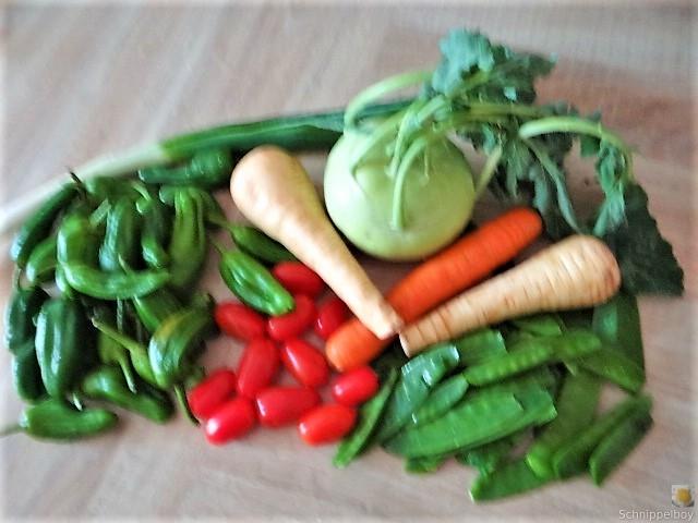 Wokgemüse und Erbs-Ricotta Creme (9)