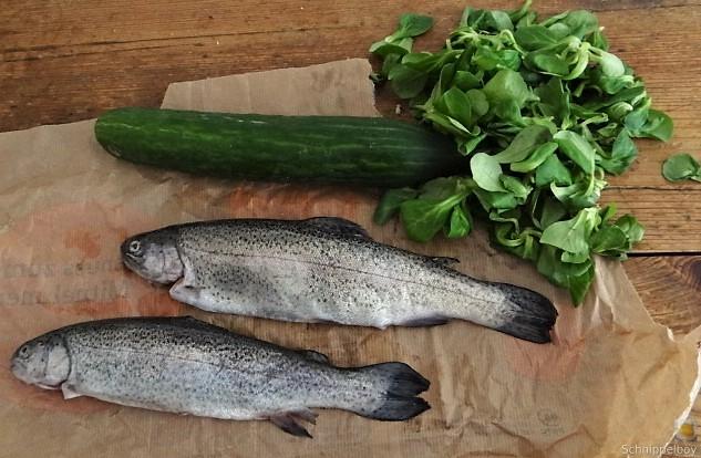 Forelle, Salate und Dip (12)
