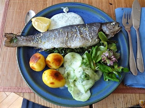 Forelle, Salate und Dip (2)