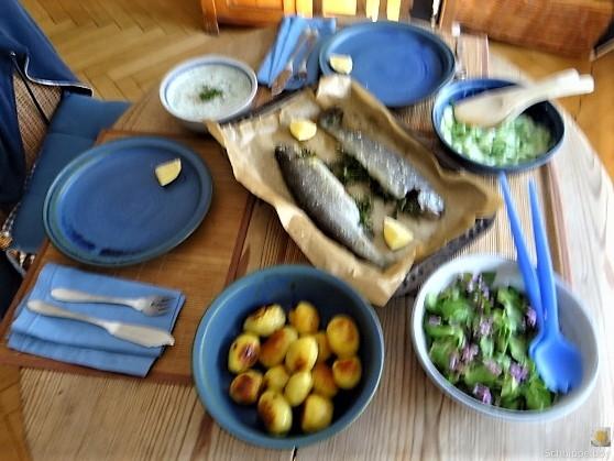 Forelle, Salate und Dip (21)