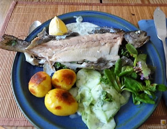 Forelle, Salate und Dip (4)