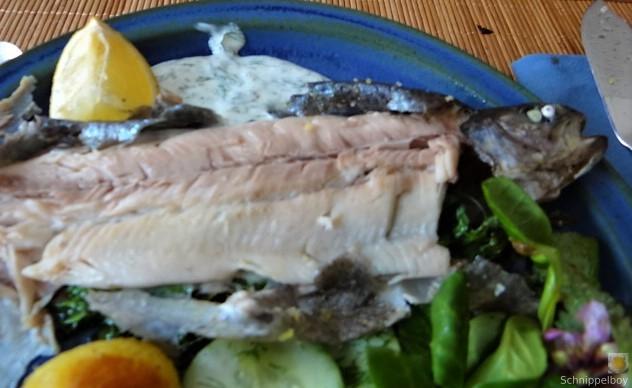 Forelle, Salate und Dip (5)