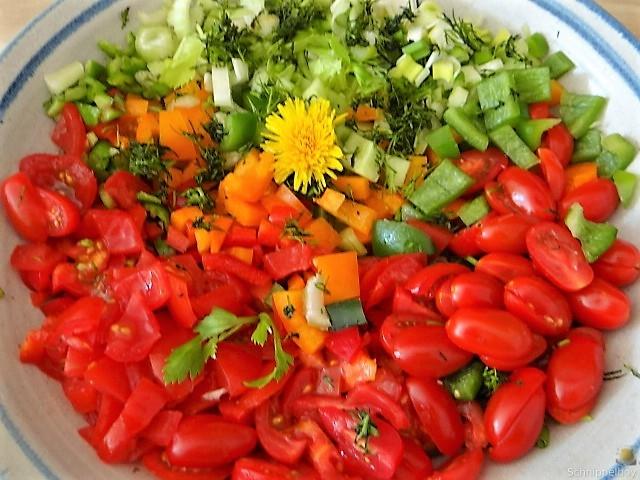 KartoffelBrennessel Gratin, Gemischter Salat (14)