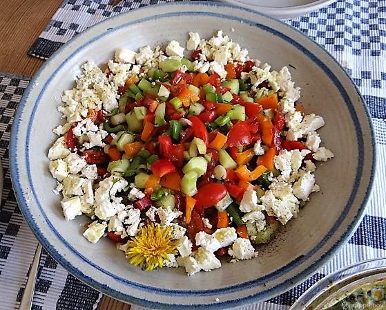 KartoffelBrennessel Gratin, Gemischter Salat (7)