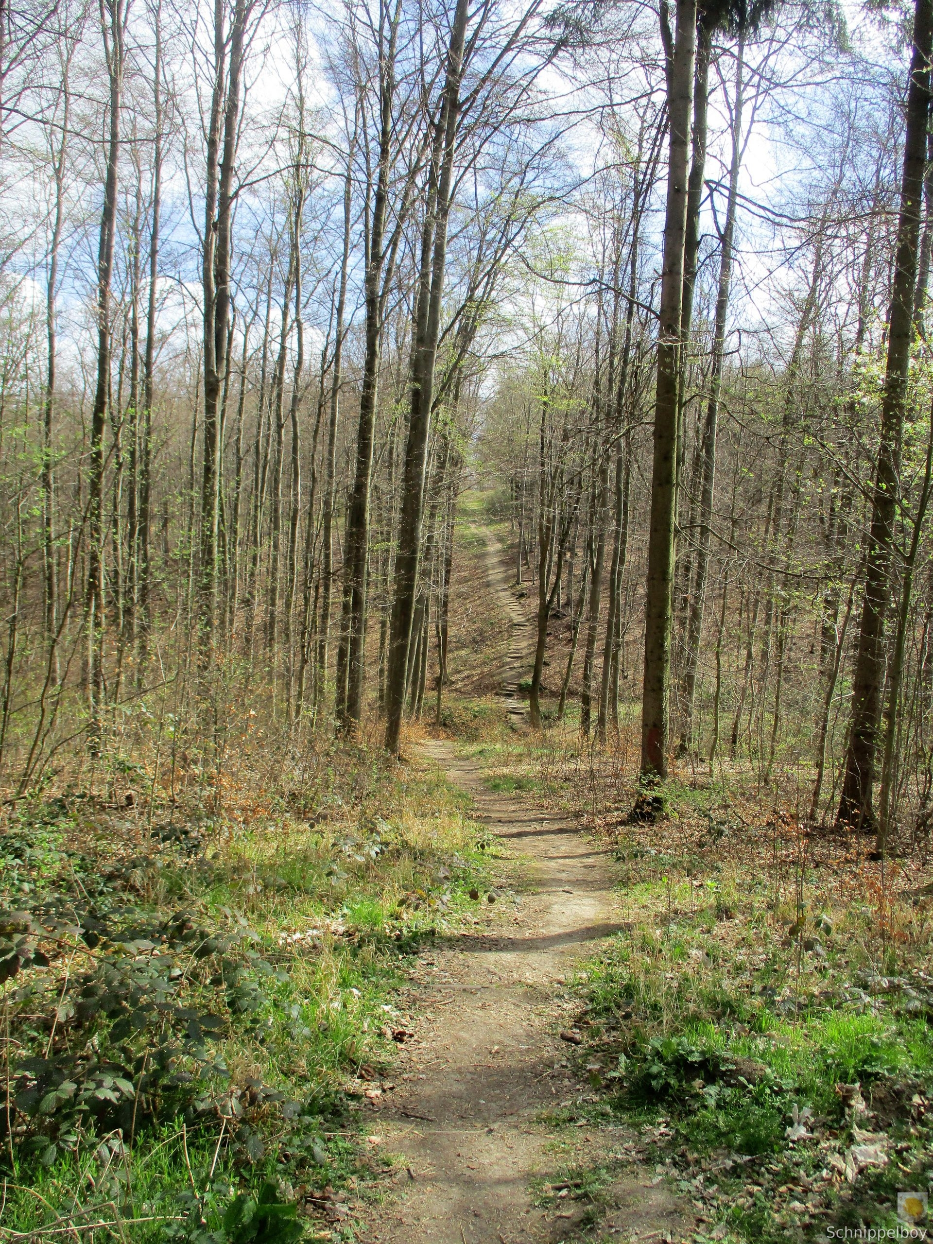Spaziergang in aller Frühe (7)