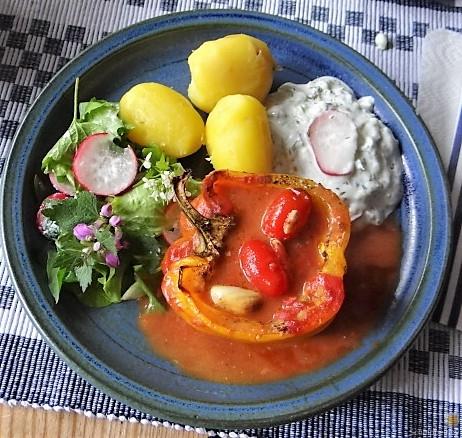 Gefüllte Paprika,Tzatziki,Bunter Salat (4)