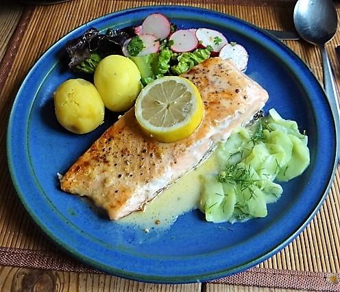 Lachs und Salate (2)