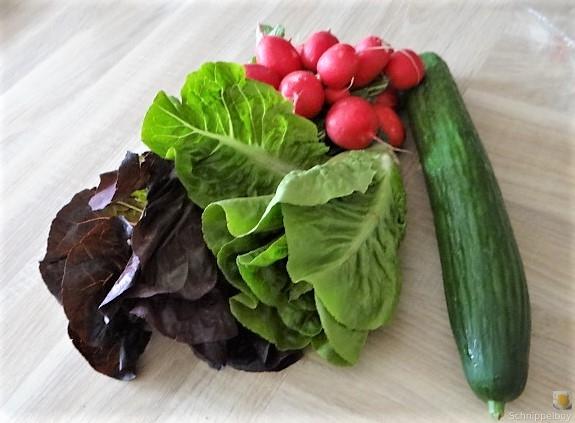 Lachs und Salate (8)
