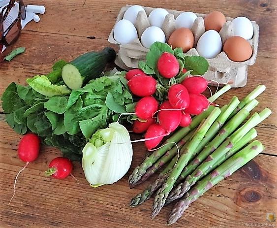 Omlette,Spargel, Salat (9)