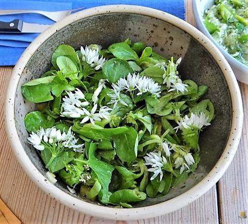 Polenta, Salate und Spiegelei (19)