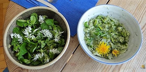 Polenta, Salate und Spiegelei (22)