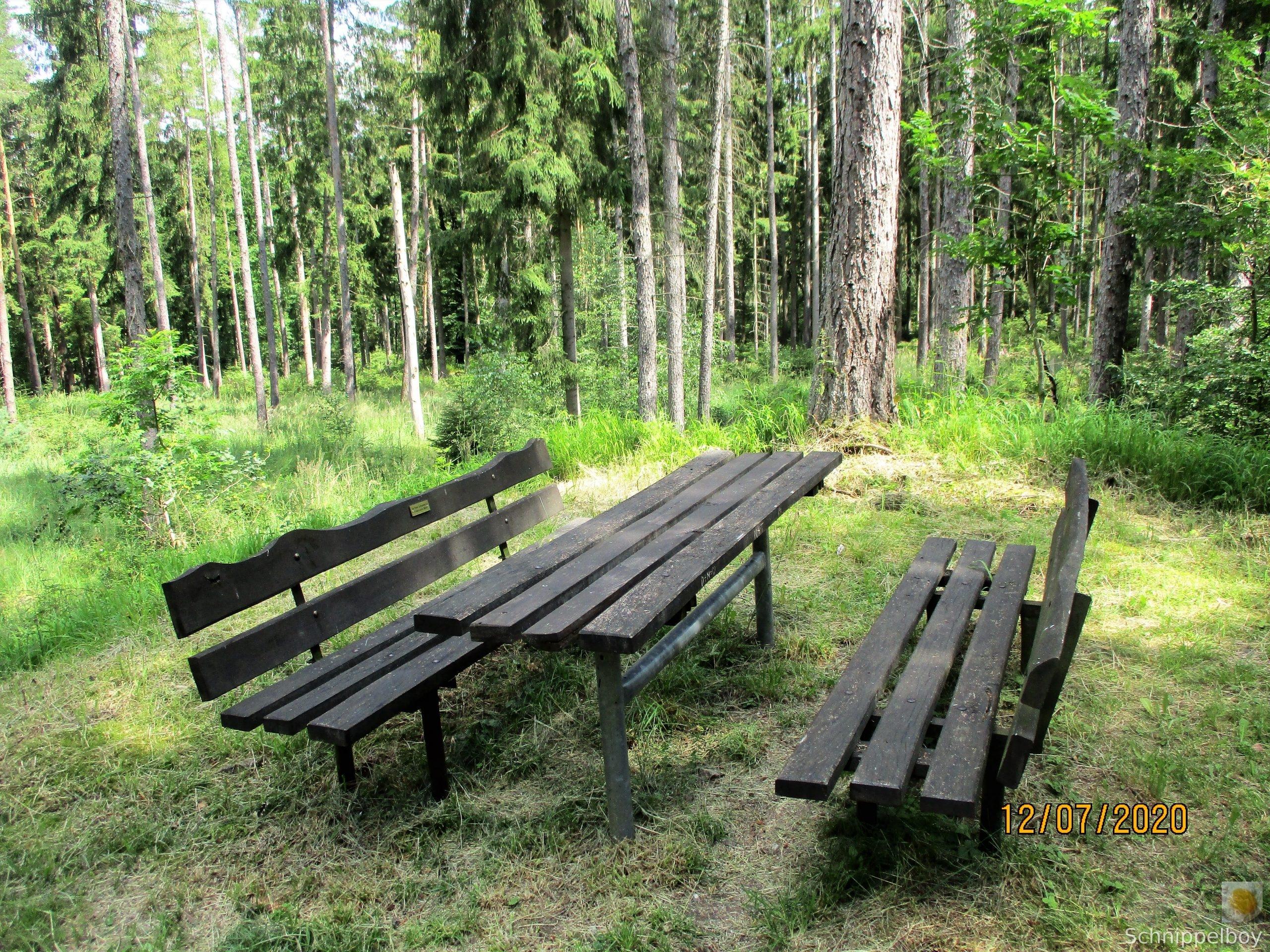 Ausflug mit Picknick (28)