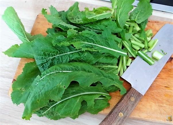 Gedämpftes Gemüse, Ernußsauce und Polenta, (10)