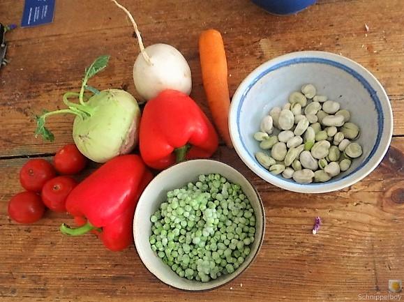 Gedämpftes Gemüse, Ernußsauce und Polenta, (11)