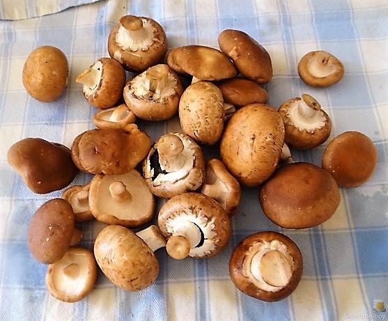 Kartoffel Zoodles und Shiitake-Champignon Pfanne (8)