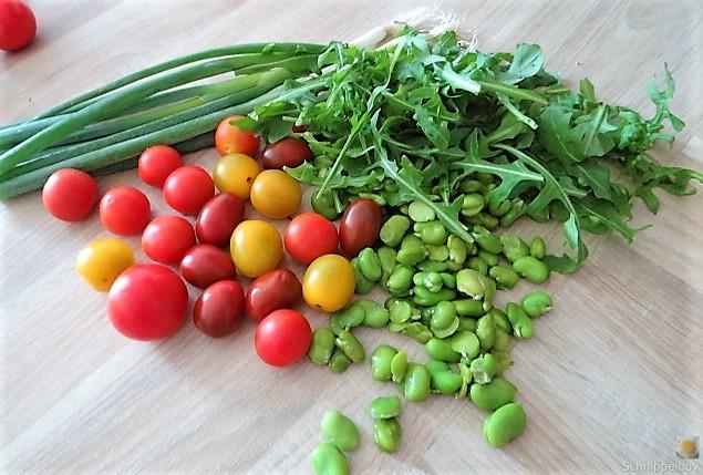 Buchweizenpasta mit verschiedenen Gemüsen (8)