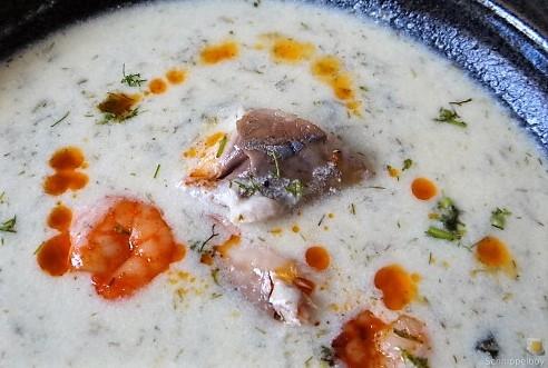 Butermilchsuppe mit geräuchertem Fisch (37)